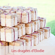 les dragees delodie