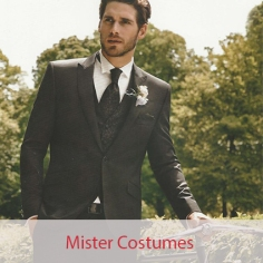 mister costumes